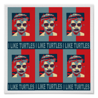 I Like Turtles Poster. Poster