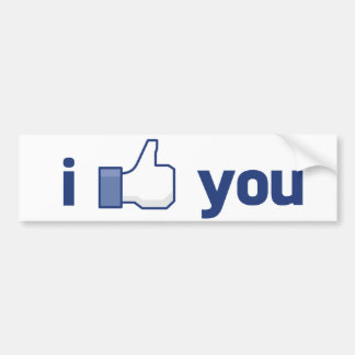 I Like You Bumper Sticker