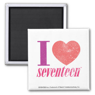 I Love 17 Magnet
