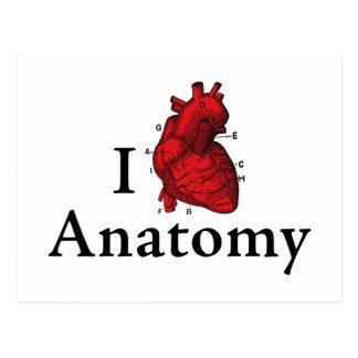 I Love Anatomy Postcard