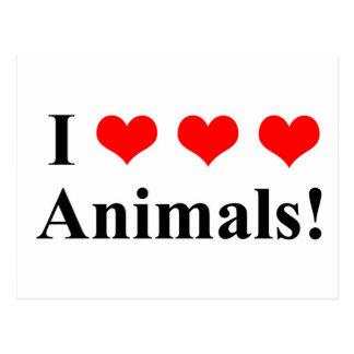 I love animals! postcard