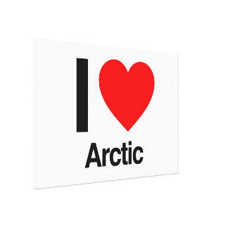 i love arctic stretched canvas print