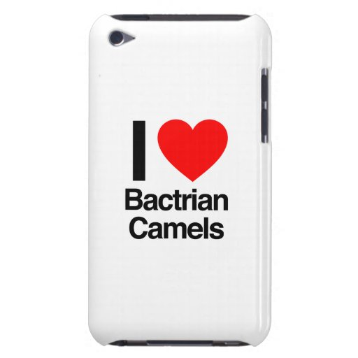 i love bactrian camels Case-Mate iPod touch case