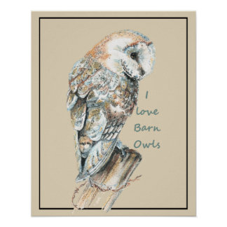 I love Barn Owls Watercolor Bird Poster
