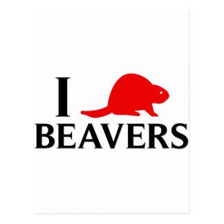 I Love Beavers Postcard