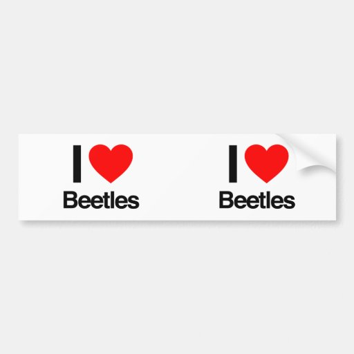 i love beetles bumper stickers