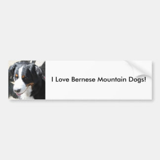 I Love Bernese Mountain Dogs - bumper sticker