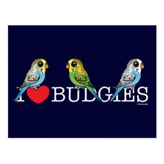 I Love Budgies Postcard