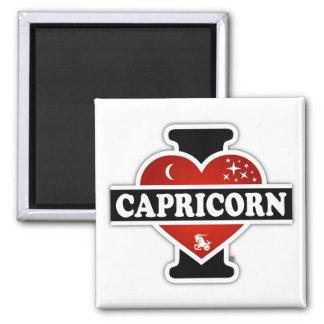 I Love Capricorn Magnet