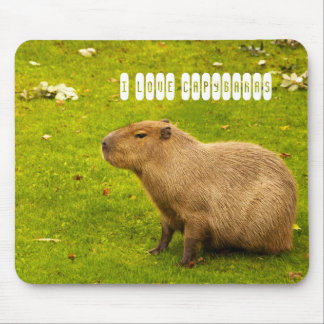 I love Capybaras Mousepad