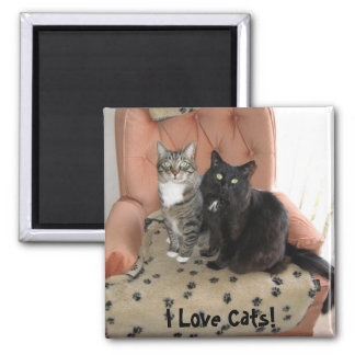 I Love Cats! magnet