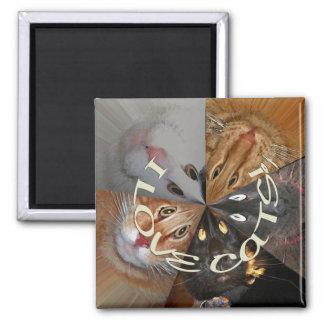 I Love Cats Magnet