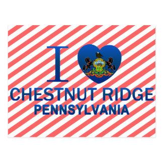 I Love Chestnut Ridge, PA Postcard