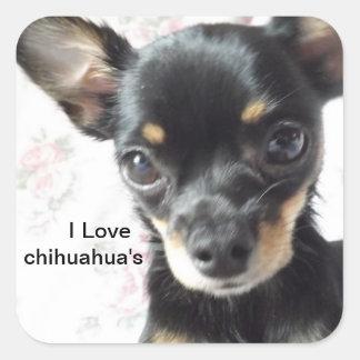 I love chihuahua's Stickers