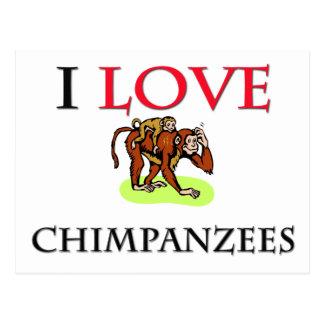 I Love Chimpanzees Postcard