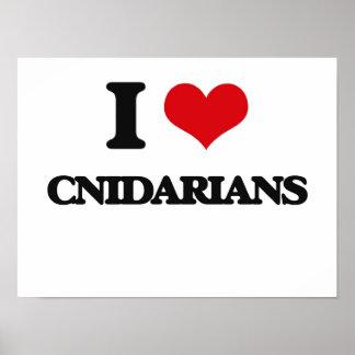 I love Cnidarians Poster