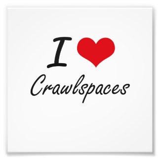 I love Crawlspaces Art Photo