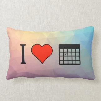 I Love Data Throw Pillows