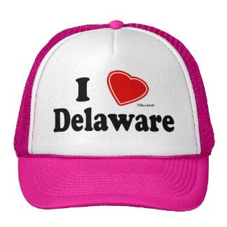 I Love Delaware Mesh Hat