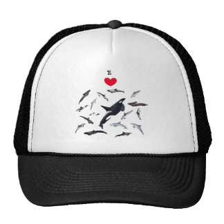 I love dolphins - Master the dolphins Trucker Hat