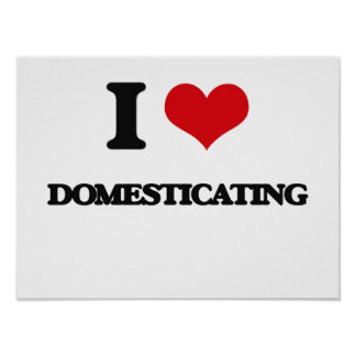 I love Domesticating Poster