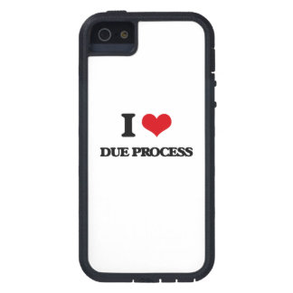 I love Due Process iPhone 5 Covers