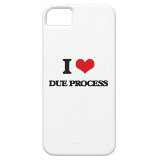 I love Due Process iPhone 5 Cases