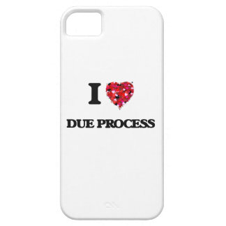 I love Due Process Case For The iPhone 5