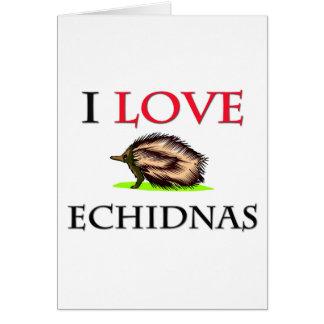 I Love Echidnas Card