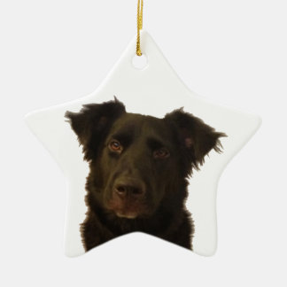 I Love English Shepherds Star Ornament