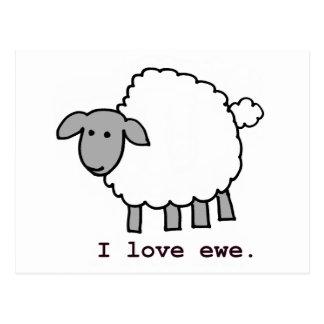 I Love Ewe Sheep Postcard