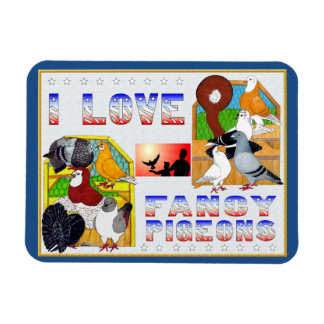 I Love Fancy Pigeons! Magnet