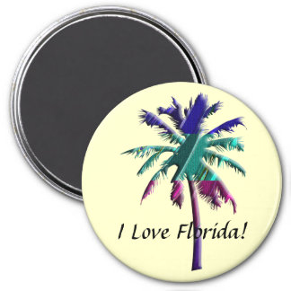 I Love Florida! Magnet