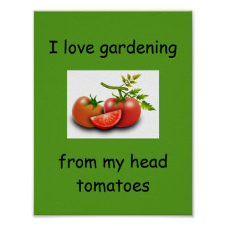 I love gardening from my head tomatoes poster