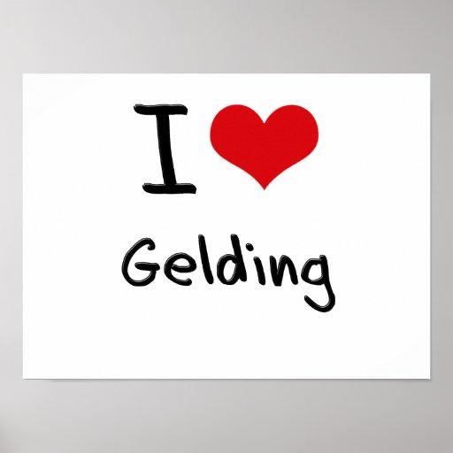 I Love Gelding Print