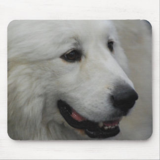 I Love Great Pyrenees  Mouse Pad