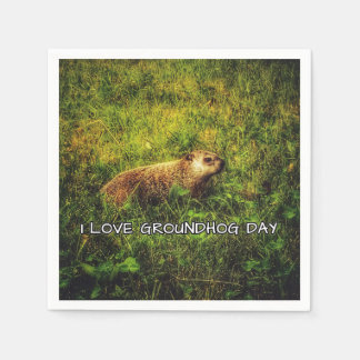 I love Groundhog Day napkins