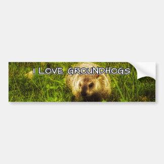 I love groundhogs bumper sticker