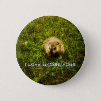 I love groundhogs button