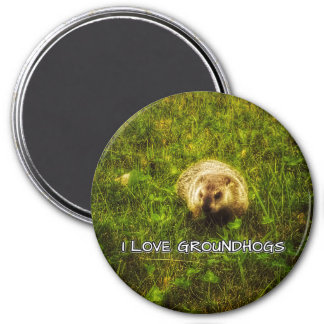I love groundhogs magnet