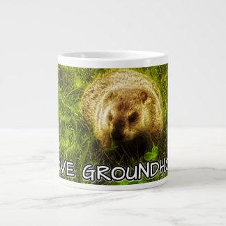 I love groundhogs mug