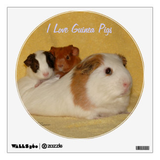 I Love Guinea Pigs Wall Decal