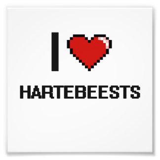 I love Hartebeests Digital Design Photographic Print