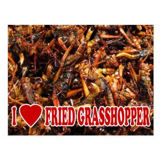 I Love (Heart) Fried Grasshopper Postcard