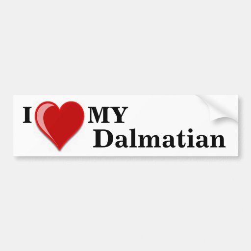 I Love (Heart) My Dalmatian Dog Bumper Sticker