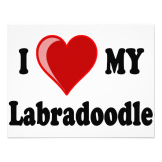 I Love (Heart) My Labradoodle Dog Personalized Announcement
