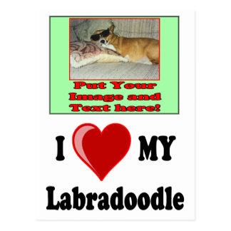 I Love (Heart) My Labradoodle Dog Postcard