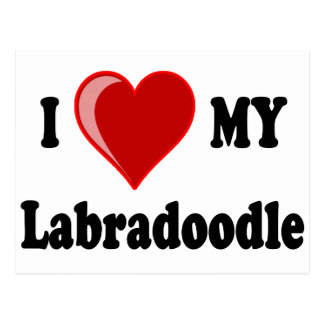 I Love (Heart) My Labradoodle Dog Postcard
