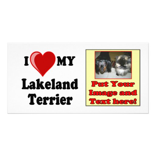 I Love (Heart) My Lakeland Terrier Dog Personalized Photo Card