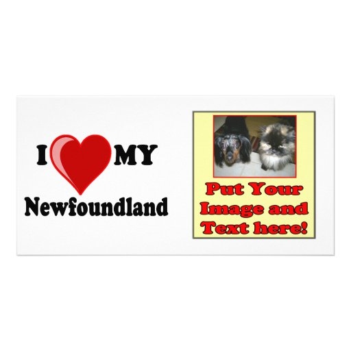 I Love (Heart) My Newfoundland Dog Photo Card Template